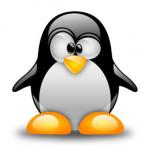 Carpeta compartida en Linux